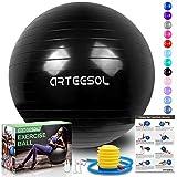 arteesol Ballon Fitness, Ballon d'exercice Balle de Fitness de 45cm/55cm/65cm/75cm/85cm Ballon...