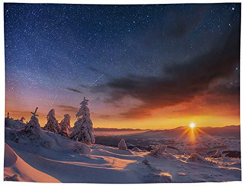 タペストリー 星空 景色 絶景 北欧 写真 絵画 布製 壁飾り 部屋飾り GT1162 150cm*130cm