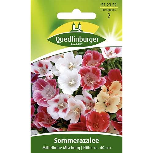 Florado Quedlinburger Atlasblumen Samen, ca. 40 Pflanzen, Blumensamen Saatgut, Clarkia amoena, Atlasblumensamen
