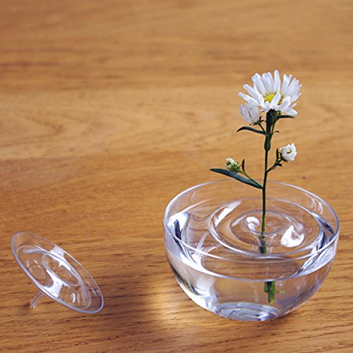 EsportsMJJ Drijvende Plant Vaas Plate Schaal Creatieve Water Wave Transparant Glas Bowl Decoratie