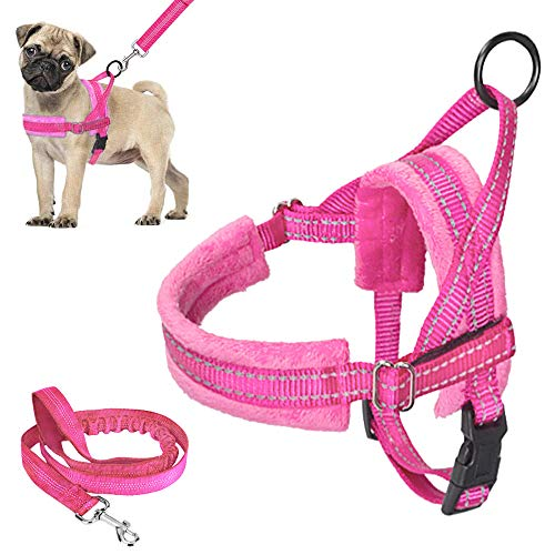 Lukovee Walking Dog Harness and Leash, Heavy Duty Adjustable Puppy Harness Soft Padded Reflective Vest Harness Anti-Twist 4FT Pet Lead Quick Fit Lightweight for Small Dog Cat (X-Small, Pink)