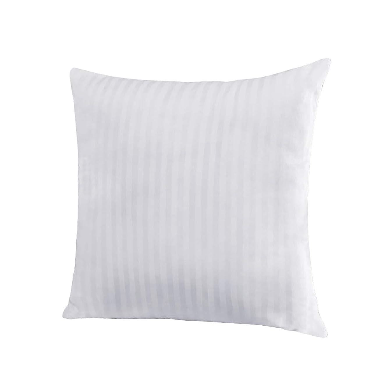 EvZ Homie Premium Stuffer Pillow Insert Sham Square Form Polyester, 20