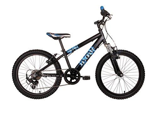 Raleigh Jungen Abstract Hardtail Bike, schwarz/blau, 13-Inch