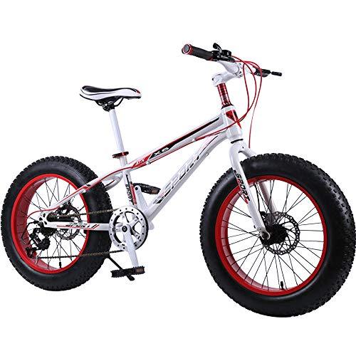 DRAKE18 Fat Bike, da 20 Pollici a 7 velocità a velocità variabile, da Spiaggia da off-Road, da Uomo, da Equitazione all'aperto,A