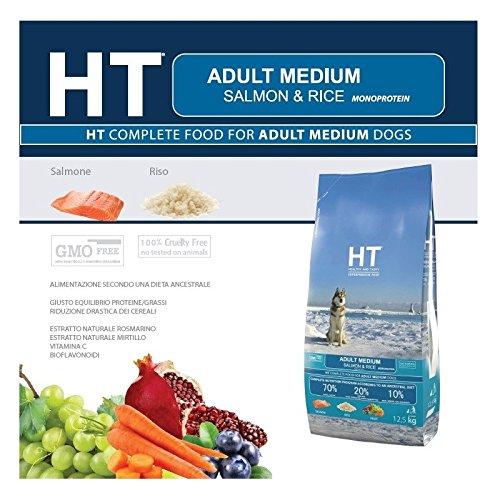 HT Healthy and Tasty Croquettes pour chien adulte, de taille moyenne - Saumon et riz - 3 kg