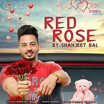 Red Rose - Single
