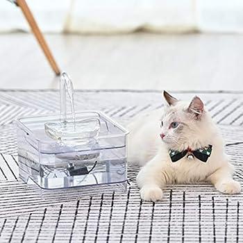 NPET Automatique Fontaine à Eau pour Chat Chien, Distributeur Eau pour Animal Domestique Filtre, 2,6L Électrique et Ultra Silencieuse WF010