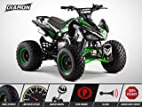 Quad Enfant 125 cm3 - PANTHERA 125 - DIAMON - Limited Edition 2020 - Vert
