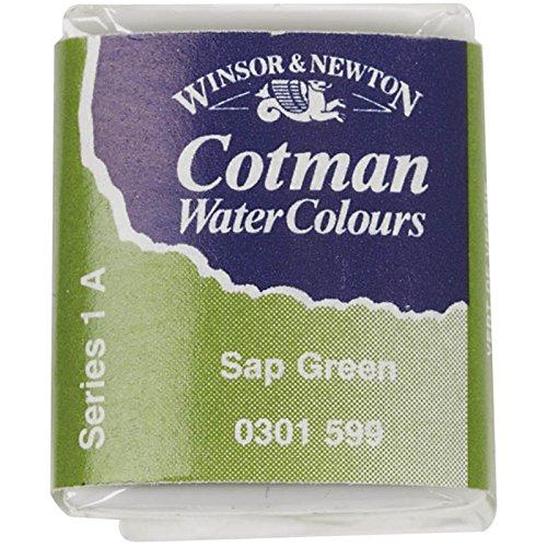 Winsor & Newton 301696 Cotman Colori Acquerello, Viridian, Verde (Sap Green), 1.9x1.6x1.1 cm