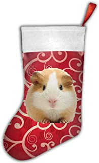 Bralla Guinea Pig Face Christmas Stockings for Holiday