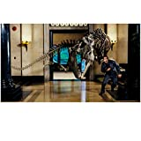 Night at the Museum: Battle of the Smithsonian 8x10 Photo Ben Stiller Running from T-Rex Skeleton kn