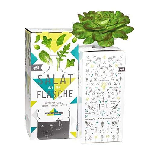 Bottlecrop - Roter Blattsalat | Salat aus der Flasche | Anzuchtsystem | Urban Farming | Hydrokultur
