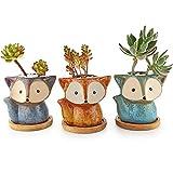 T4U Macetas para Cactus de Cerámica con Plato de Bambú Paquete de 3, Zorro Pequeña Maceteros Pequeños para Suculento Plantas Casa y Jardin Boda Decorativos Interior