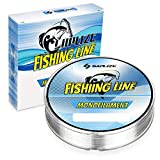 SAPLIZE Monofilament Fishing Line, 110yds 10LB Light Grey Super Strong Strength Low Stretch Easy Casting Fishing Line