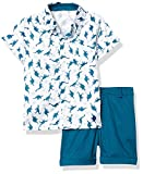Toddler Baby Boy Flamingo Short Sleeve Button Down Shirt & Casual Shorts Kids Summer Outfits 1-6 Years Clothes Set (Dinosaur&Blue, 4-5T)