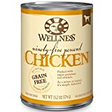 Best Dog Vitamins And Minerals