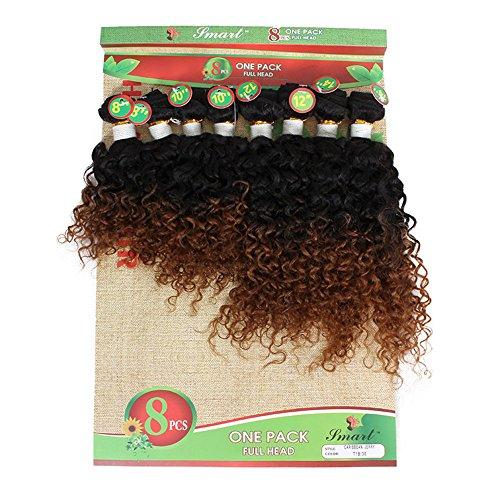 8 Bundles Eunice Hair Kinky Curly Hair Extension Brasilianische Human Hair Bundles 8-14 Zoll Fading to Schwarz Haarverlangerung Ombre Brown Extensions(8 10 12 14 zoll, 1B 30(jerry curly))