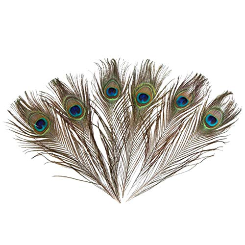50PCS Natural Peacock Tail Body Feathers for Crafts 10-12 Inch / 25-30cm for DIY Earrings Craft Nice for Home Wedding Party Baby Shower Decorations