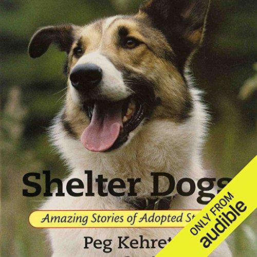 Shelter Dogs audiobook cover art