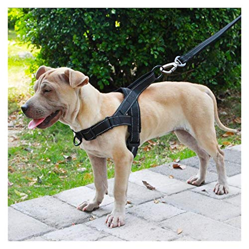LOOEST Dog Harness Dog Harness Easy On and Off Adjustable Medium Large Dogs,Reflective no Pull Training Vest for pet Dogs walking harness for Dogs Training or Walking (Color : Black, Size : XL)