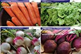Vegetable 4-Pack Assorted Bundle 22.5 Ft Seed Tape with Radish, Carrots,Beets and Lettuce Seeds