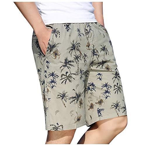 YANFANG Pantalones Cortos con Recorte De Moda para Hombres Shorts Casuales Hombre,Pantalones Deportivos Impresos Culturismo Casual Verano Hombre,Gris,XL