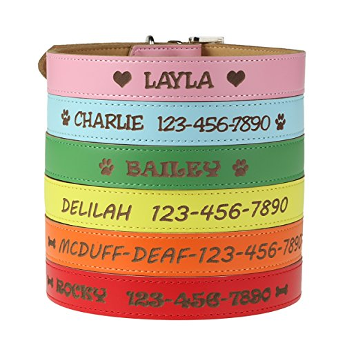 Custom Catch Personalized Dog Collar - Engraved Soft Leather in XS, Small, Medium or Large Size, ID Collar, No Pet Tags or Embroidered Names
