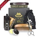 6 en 1 Kit de Toilettage de Barbe pour les Hommes,l'huile pour la barbe (30 ml), de la cire pour la barbe (30 g),2* un pinceau à barbe, un peigne à barbe en bois, des ciseaux à barbe