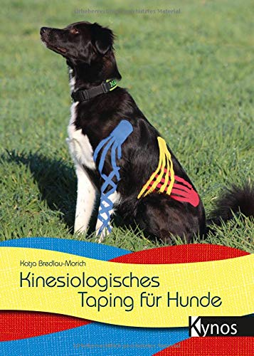 Kinesiologisches Taping für Hunde