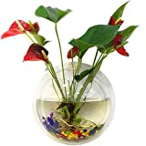 Tinksky Fish Tank Wand hängenden Clear Glas Vase Blume Pflanze Topf Aquarium...