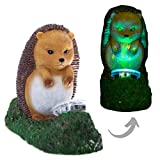 Boxer Gifts Hedgehog Zombie Animal Garden Ornament | Solar Powered Statue Decoration | Glow in The Dark Blood