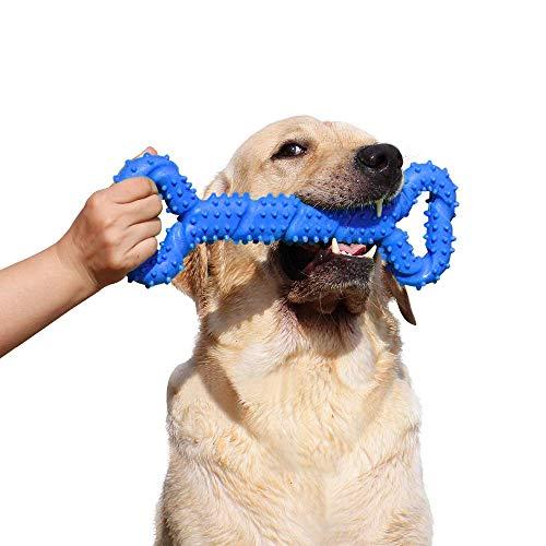 Robustes Hundespielzeug 13 Inch Knochen geformt Kauspielzeug aus Hartgummi mit Konvexes Design stark interaktives Spielzeug für große kleine Hunde, Zähne reinigen und Zahnfleisch massieren