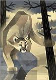 Poster 30 x 40 cm: Puma von Dieter Braun - hochwertiger