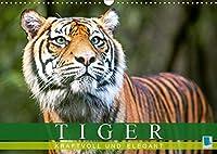 Tiger: kraftvoll und elegant (Wandkalender 2021 DIN A3 quer): Tiger: Die groesste Katzenart der Erde (Monatskalender, 14 Seiten )