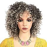 MEIRIYFA Peluca afro rizada para mujeres negras, peluca afro corta rizada con flequillo sintético resistente al calor peluca completa para mujeres negras y niñas (gris-plata)