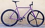 MOWHEEL Bicicletta Violette Monomarcia Single Speed Taglia - 54 cm