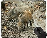 Schneiden Sie Schwein Mousepad, Eber-Mausunterlagen