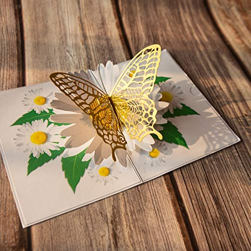 Butterfly on White Chrysanthemum Pop Up Card, Butterfly birthday card, Flower 3d Card, Pop Up Flower Cards, Popup card for Mom, Popup card for Wife, Anniversary Pop Up Card, Pop Up Love Card