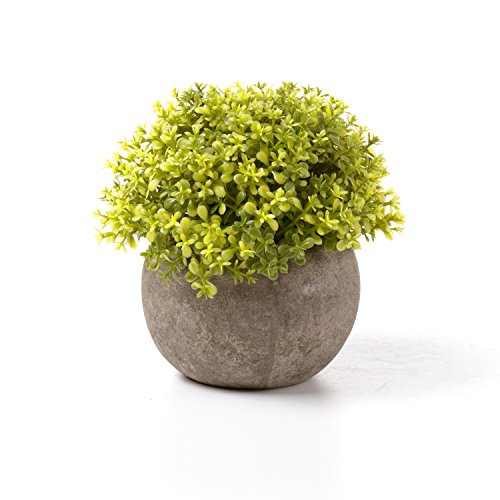 T4U Artificial Plastic Plants with Pots Mini Size for Home Office Wedding Decoration Chartreuse