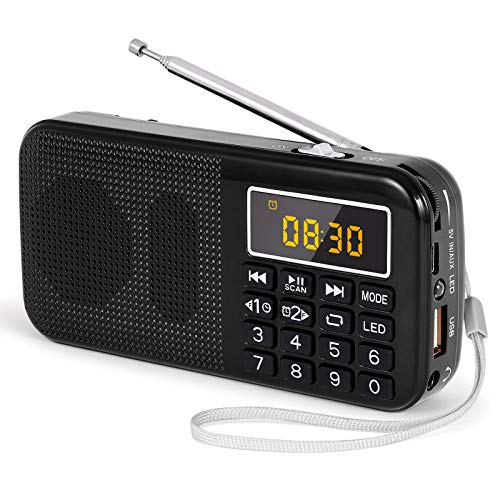Radios Portatiles Pequeñas Digitales Marca prunus
