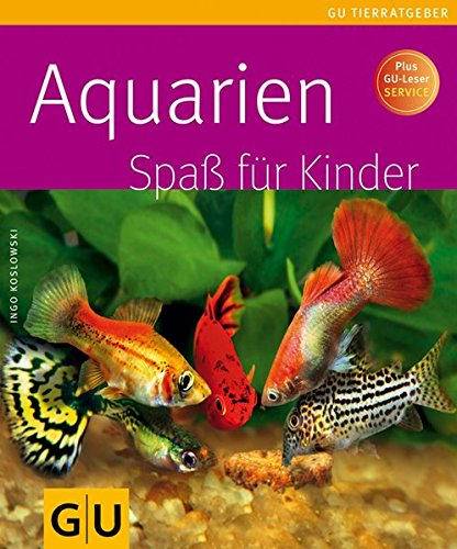 Aquarien Spaß für Kinder