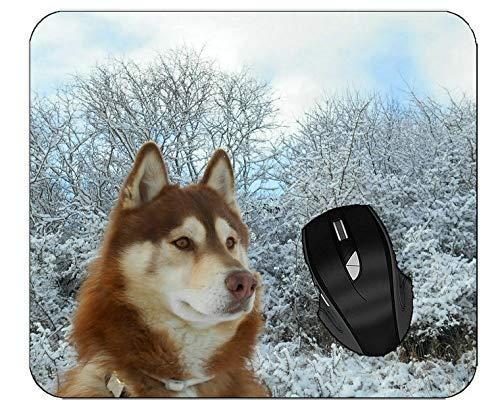 Mousepads Haustier Schnee Winter Husky Hund Schlitten Hund Maus Matte