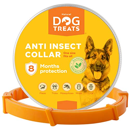 Natural Dog Treats Collare Antipulci e Zecche per Cani, Gatti, Regolabile Impermeabile 8 Mesi Prevenzione Antiparassitario