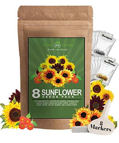 8 Packets Sunflower Seeds to Plant | Bulk 1000+ Seeds | Heirloom Seeds | Non-GMO Flower Seeds for Planting Outdoors | Garden Seeds for Baby Shower Favors or Wedding Favors | for Birds and Bees
