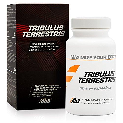 TRIBULUS TERRESTRIS * Estimulante natural de testosterona * Altamente titulado en saponinas (40%) * 470 mg / 180 cápsulas vegetales * Extracto titulado 100% natural