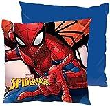 ML Pank 2 Kissen für Babyzimmer Kissen 40 x 40 cm Kissen für Kinder rot / blau