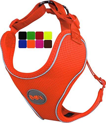 DDOXX Hundegeschirr, Reflektierend, Verstellbar, Ausbruchsicher   Brust-Geschirr für kleine, mittel-große   Hunde-Geschirr Hund Katze Welpe Auto   Katzen-Geschirr Welpen-Geschirr   Orange, XL