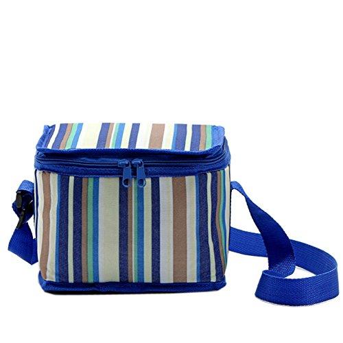 Yvonnelee lunchtas lunchtas tas thermotas koeltas isoleertas picknicktas voor levensmiddelen, 4L