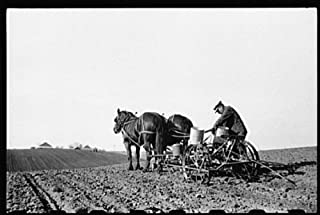HistoricalFindings Photo: Corn Planting,Jasper County,Iowa,IA,Farm Security Administration,FSA,1940,17
