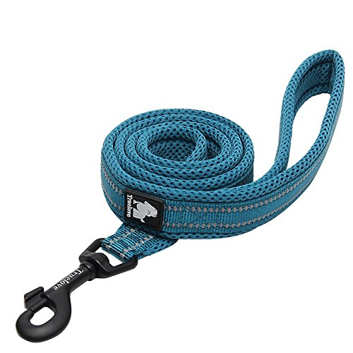 Chai's Choice Best Padded 3M Reflective Outdoor Adventure Dog Leash. (78